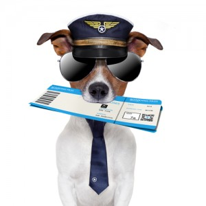 как купить электронный билет на самолёт